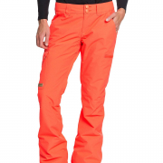 DC Recruit Pants oranje